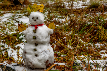 Little snowman made of the first snow with autumn leaves and buttons of moss, stands on the birch and grass in the autumn forest Stock Photo