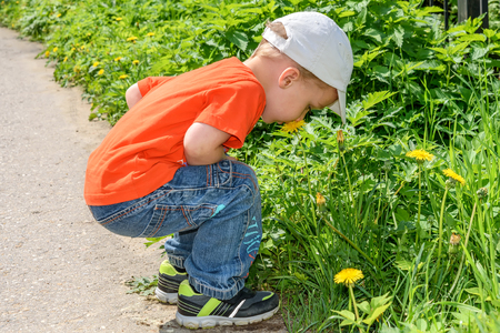 A little boy in an orange shirt and jeans smelling a yellow dandelion flower in the park Stock Photo