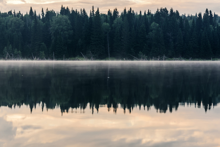 Scenic view with forest, fog and clouds reflecting in the smooth water of the lake at dawn Stock Photo