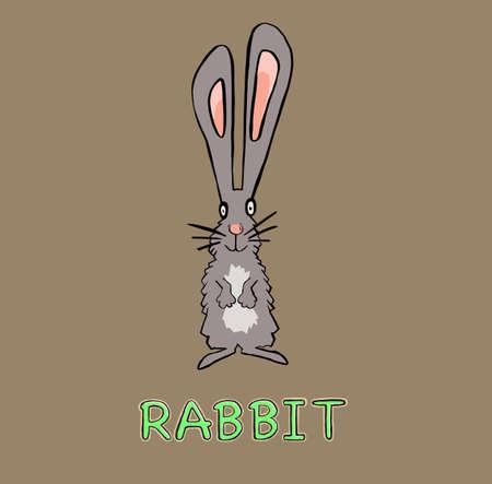 cute rabbit animal in frame circular illustration