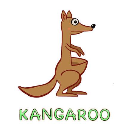 Kangaroo illustration isolated . Australian animal