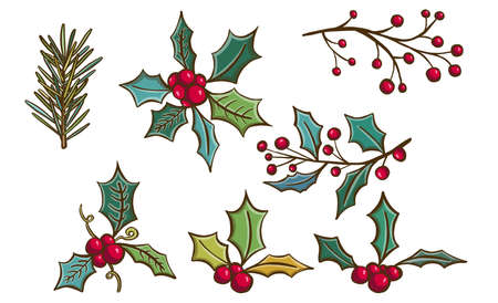 Hand drawn with red berries and fir branches. Christmas cards and winter design. Vector illustration