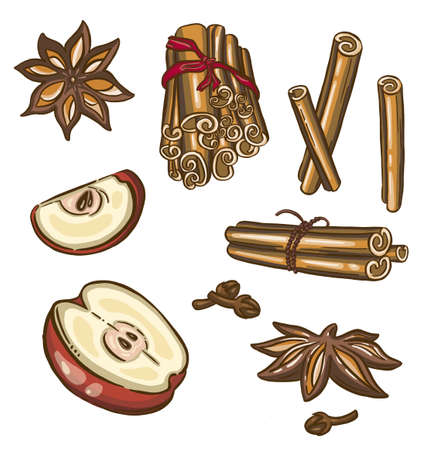 Christmas spices, star anise. Vector illustration