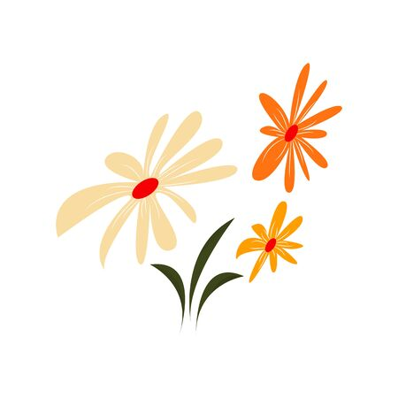 Composition of three flowers of yellow and orange. Vector. Isolated on white background 일러스트