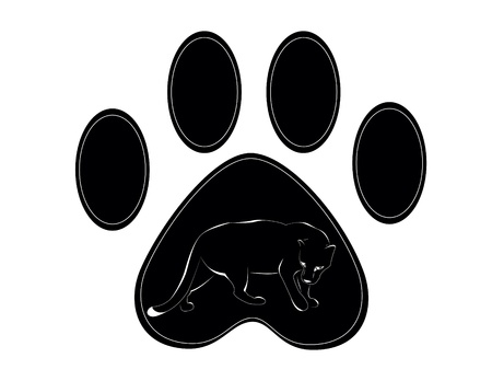 black male: paw of panther