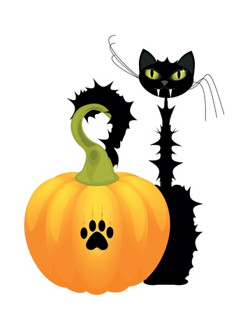 Halloween cat with orange pumpkin Vector