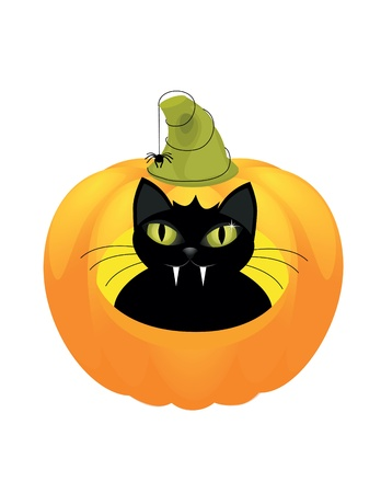 hallow: A cute black cat on a Halloween pumpkin.