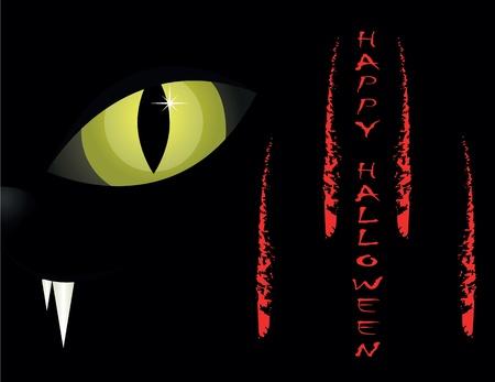 scary eyes: cat