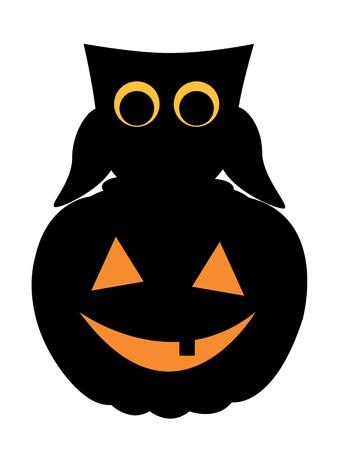 owl and pumpkin on halloween Vector