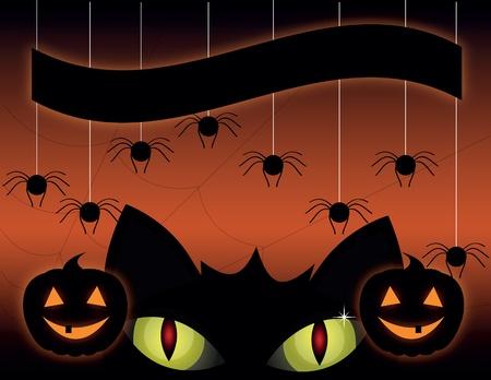 13th: A cute black cat on a Halloween pumpkin.