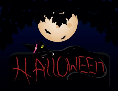 black cat on night of Halloween with Moon and bat Stock Vector - 15197241
