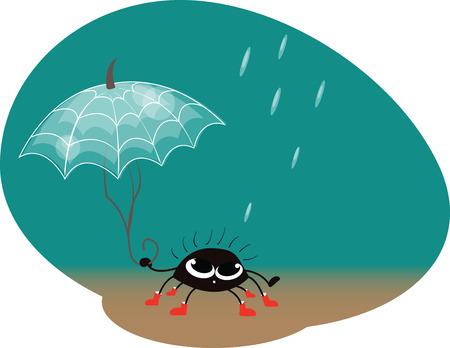 spider webs: black spider with umbrella of spider webs