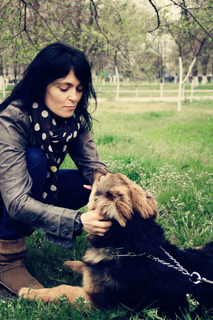 german shepherd on the grass: woman with dog German Shepherd on the park on the grass. photo Stock Photo