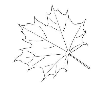 bianco Maple Leaf su sfondo bianco. vettore Vettoriali