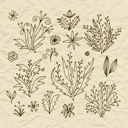 leafage: Set of vector stylized flowers leaves, retro old vintage branches swirls on torn paper Illustration