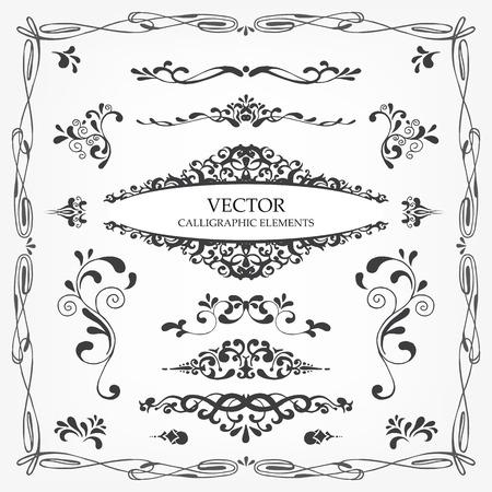 Vector kalligrafie pagina decoratie, kalligrafische wervelingen en krullen elementen voor het ontwerp