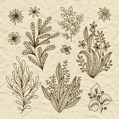 vintage paper: Set of vector stylized flowers leaves, retro old vintage branches swirls on torn paper Illustration