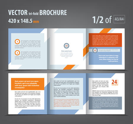 print template: Vector empty tri-fold brochure print template design, trifold booklet or flyer