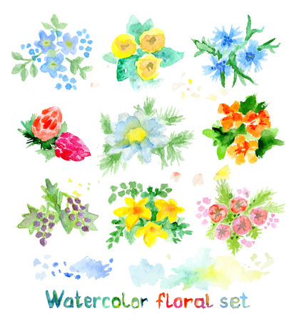 bridal bouquet: Watercolor floral vector set of small flowers, bright aquarelle elements Illustration