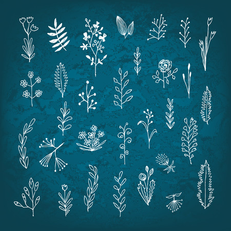 branches with leaves: Set of vector stylized flowers leaves, retro old vintage branches swirls on blue paper
