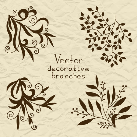 retro flowers: Set of vector stylized flowers leaves, retro old vintage swirls on torn paper Illustration