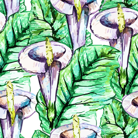 callas: Vector seamless bright callas blossom pattern, floral spring branch ornament, fashion print for fabric, watercolor pencil drawing flowers Illustration