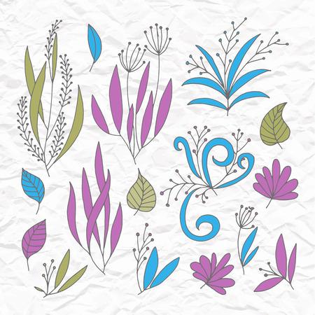hojas antiguas: Conjunto de vectores estilizada flores y hojas, ramas retro vendimia viejo remolinos en el papel rasgado