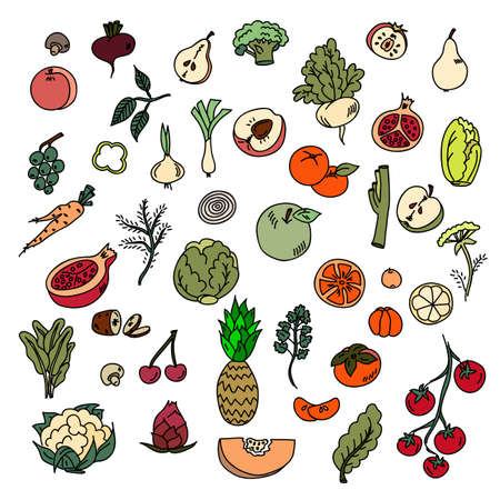 Set colors elements vegetables and fruits. Vegetarian food.