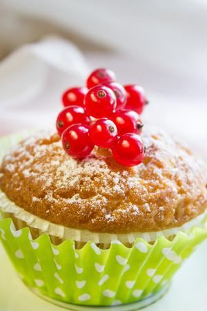 Mini dessert with berries. Close-up.