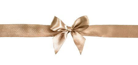 Brown bow isolated on white background. Silk ribbon, silk bow.