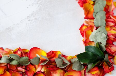 Frame of rose petals and green twigs with leaves. On a white background with an imitation of white paint. In the lower right corner are dark green leaves. Concept for greeting card or mother's day. Copy space.