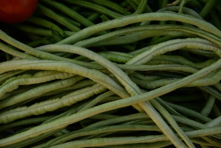 green beans is raw, harvested on wooden background. legumes, vegetarianism and gardening.