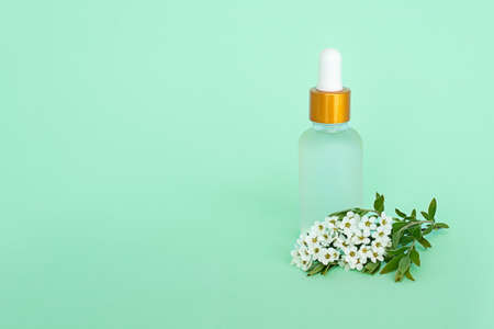 Glass cosmetic bottle with oil. Glass container for a cosmetic product for women with small white flowers on a turquoise background.