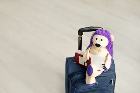 toy on a suitcase with palm leaves, a home plant. Hedgehog tourist. A packed suitcase stands at home