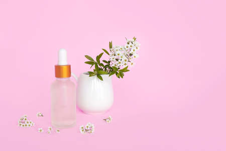 Glass cosmetic bottle with oil. Glass container for a cosmetic product for women with small white flowers on a pink background. Archivio Fotografico