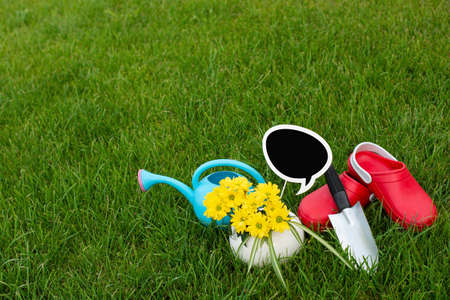 Gardening. work in the garden. tools, watering can and flower in a pot on a background of green leaves. Copy space. Dark wooden background. Rough boards