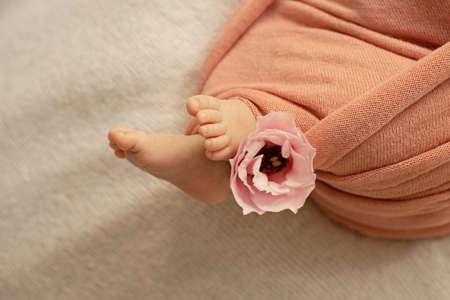 Newborn baby feet. Motherhood concept. Mother day. Copy space. Newborn baby feet. Motherhood concept. Mother day. Copy space. Selective focus