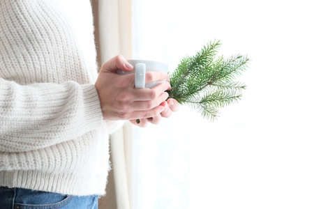 A Christmas tree in the hands of a girl in a white knitted sweater. Minimalism. Cozy winter, New Year