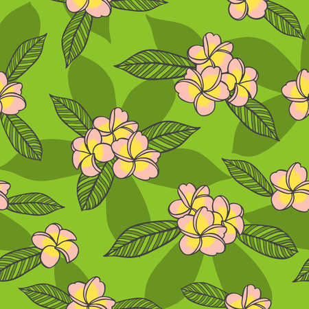 Summer floral pattern vector seamless. Pink frangipani flowers on green background. Design for tropical fabric, hawaiian textile, exotic wallpaper or wrapping paper.