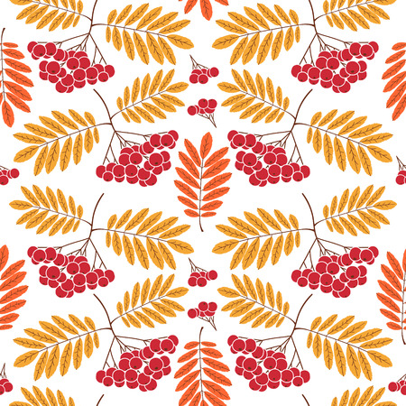 Autumn forest pattern vector seamless. Rowan leaves and berries on white background. Fall colorful print for seasonal banner, kids wallpaper, wrapping paper or thanksgiving card template.