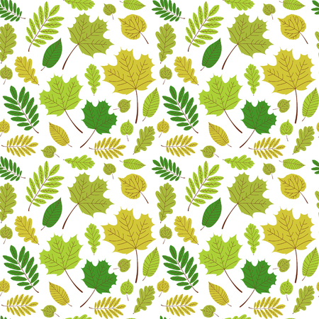 Leaves forest pattern vector seamless. Tree foliage on white background. Nature greenery print for seasonal banner, eco natural product package, wallpaper, wrapping paper or card template.