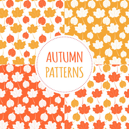 Set of autumn forest patterns vector seamless. Gold tree leaves background. Nature print for seasonal banner, kids wallpaper, natural product package, wrapping paper or thanksgiving card template.