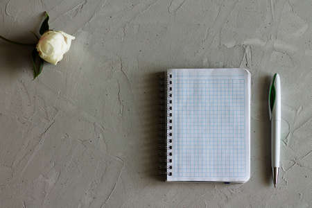 notebook, flower and pen on a gray surface