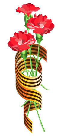 Red carnations intertwined with St. George ribbon on a transparent background. Vector isolated object. Illustration