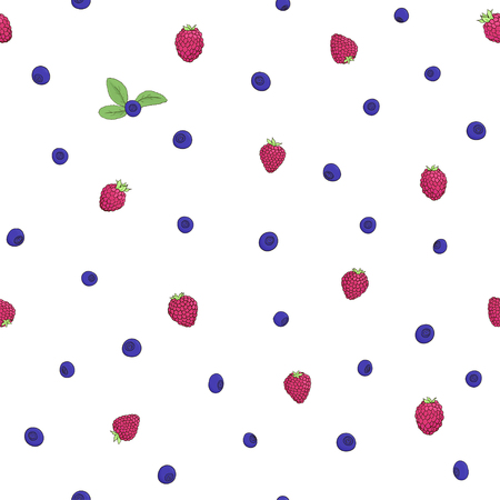 bilberry: Seamless natural pattern of raspberries and blueberries on a white background. Elements of the pattern drawn by hand a dark outline and painted bright colors. Vector illustration. Illustration