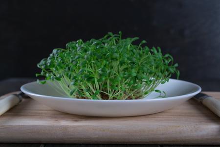berro: Berro de jardín en un plato blanco con tenedor y cuchillo. Comida vegetariana saludable. Hierbas frescas. Foto de archivo
