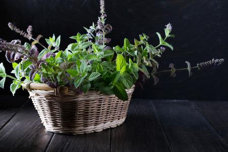 Basket with fresh green mint on dark  background.