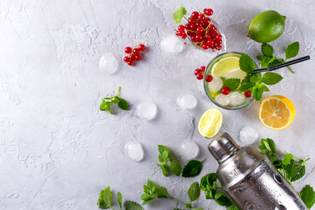 Cocktail shaker, lemon, lime, mint leaves , red currant  and  ice  for preparing a summer cocktail Stock Photo