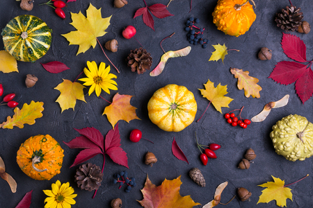 Autumn leaves and pumpkins over  dark concrete background Mockup for seasonal offers and holiday post card, top view Фото со стока