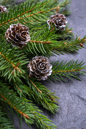 Christmas stone  with branch of a fir tree and pine cones Banco de Imagens